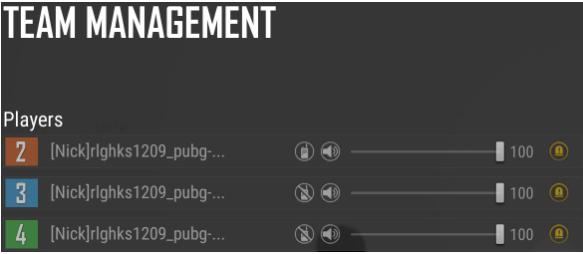 pubg team management